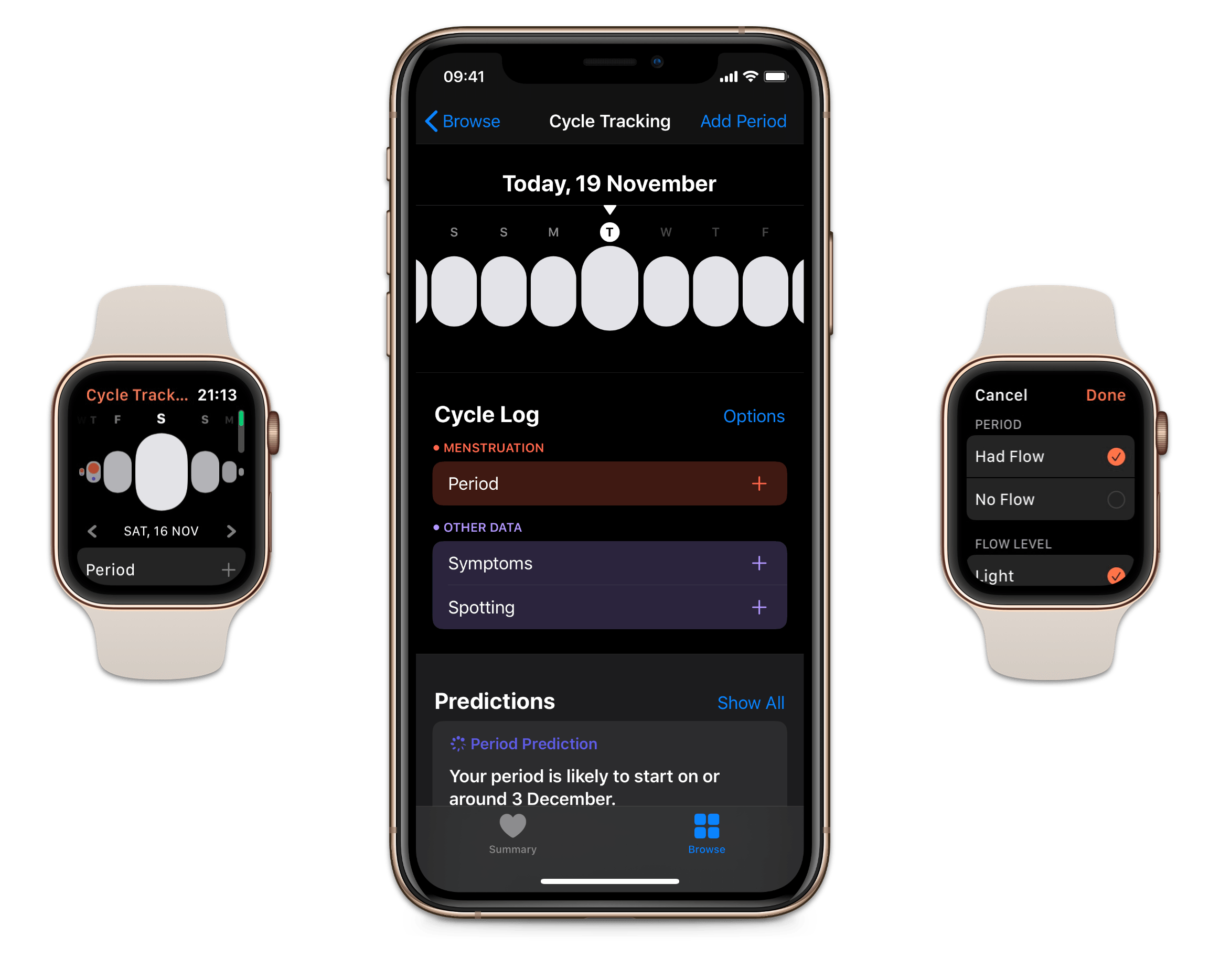 The Cycle Tracking app on watchOS and inside Health on iOS.
